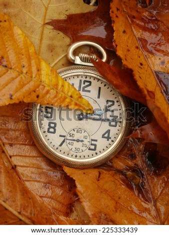 Antique pocket watch on Fall leaves - stock photo