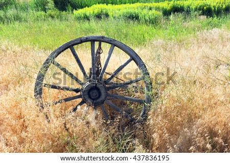 Antique, wooden wagon wheel lies overgrown with weeds in a field in Happy Valley, Wyoming.