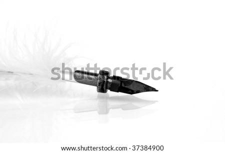 antique writing feather isolated on white background - stock photo