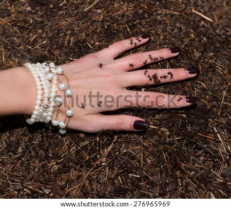 Ants on a female hand, fingers separately. Medical concept - stock photo