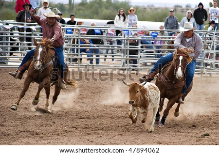 APACHE JUNCTION, AZ - FEBRUARY 27: A cowboy participates in the steer wrestling competition at the Lost Dutchman Days Rodeo on February 27, 2010 in Apache Junction, Arizona.