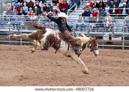 APACHE JUNCTION, AZ - FEBRUARY 27: A cowboy rides a bucking horse in the saddle bronc competition at the Lost Dutchman Days Rodeo on February 27, 2010 in Apache Junction, Arizona. - stock photo