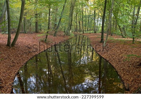 Apeldoorn, Netherlands - October 31, 2014: pond in forest Het Loo Palace in Apeldoorn. - stock photo