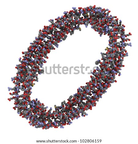 Apolipoprotein A-I molecule, the main protein component of high-density lipoprotein particles (HDL, also known as good cholesterol). - stock photo