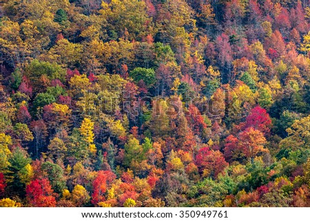 Appalachian fall colors - stock photo