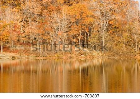 Appalachian trail in New Jersey, autumn foliage - stock photo