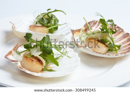 appetizerclose-up: scallops, onion fennel, herbs