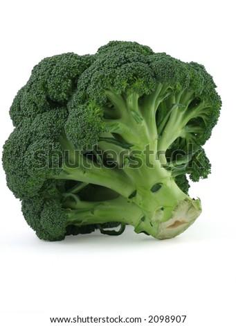 appetizing broccoli on white background - stock photo