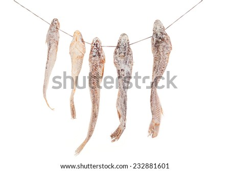 appetizing dry and salted fish  - stock photo