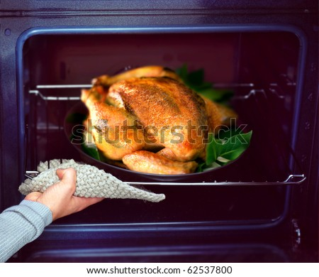 appetizing roast chicken and potatoes in the oven - stock photo