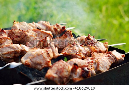 Appetizing shish kebab is fried on a skewers outdoor - stock photo