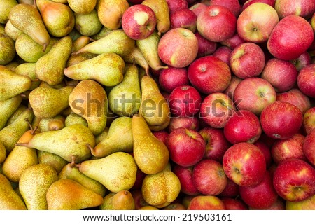 apple and pear fruit in season - stock photo