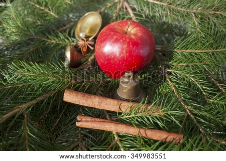 apple,bells,christmas time,marry christmas,christmas decoration,needle,red apple,badian,green background - stock photo