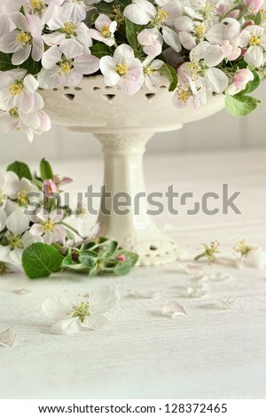 Apple blossom flowers in vase on table - stock photo
