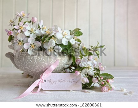 Apple blossom flowers in vase with gift card - stock photo