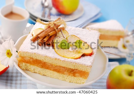 apple cake with icing sugar and cinnamon
