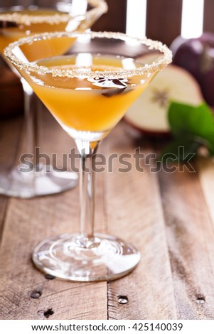 Apple cider martini with spices and star anise - stock photo