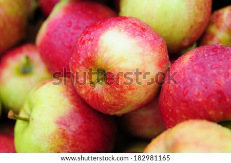 Apple Corps - stock photo