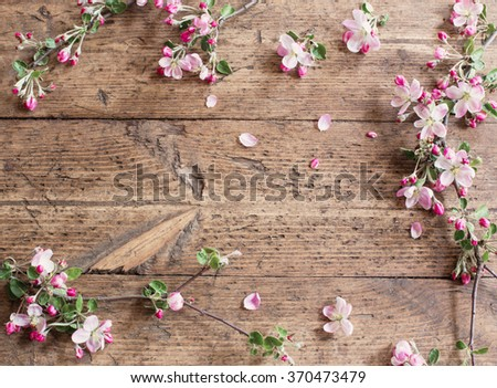 apple flowers on wooden background - stock photo