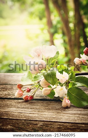 Apple flowers on wooden board - stock photo