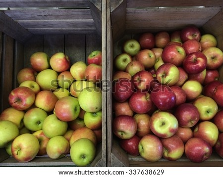 Apple Harvest: Colorful green and red Fuji and McIntosh apples nestled in wood crates shortly after harvest. - stock photo