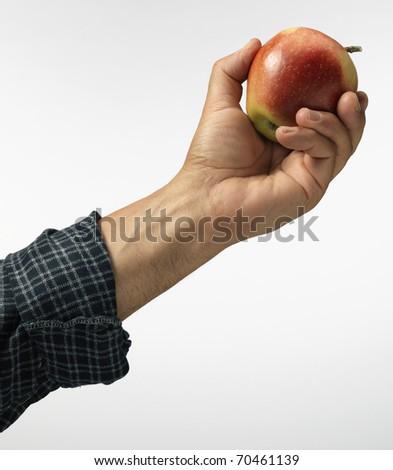 apple in hand - stock photo