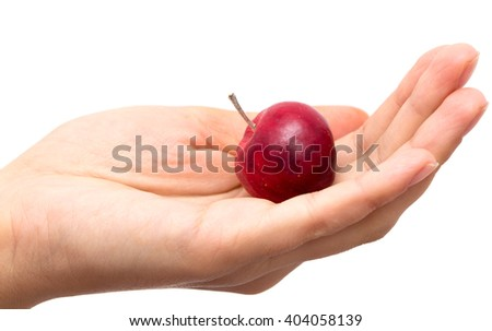 apple in hand on white background