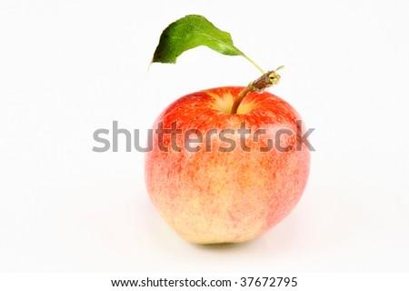 apple on isolated white background - stock photo
