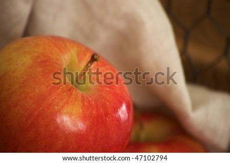 apple on linen - stock photo