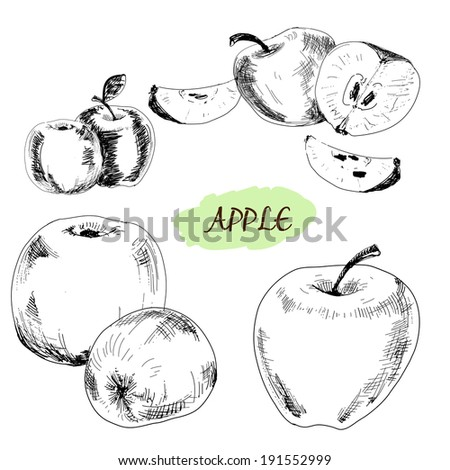 Apple. Set of hand drawn graphic illustrations. - stock photo