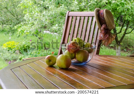 Apple tree fruits in glass dish on bower table in garden.   - stock photo