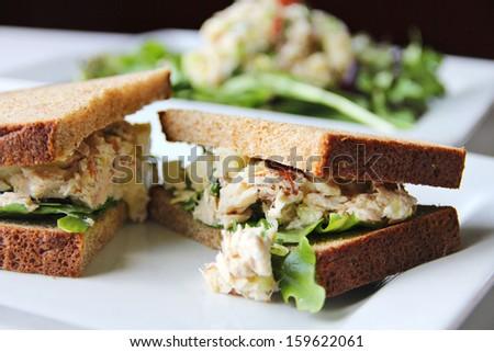 apple tuna sandwich - stock photo