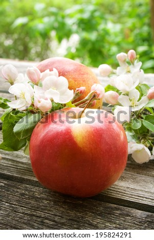 Apple with flowers on wooden board outdoors - stock photo