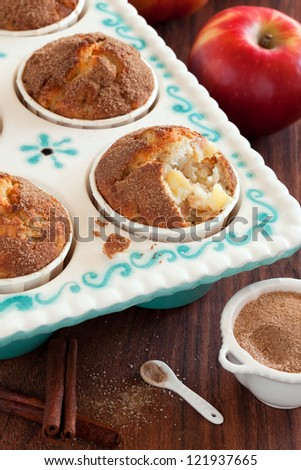 Apples and cinnamon muffins, selective focus - stock photo