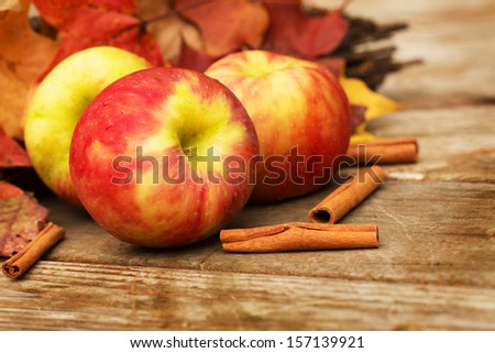 Apples and cinnamon sticks in Autumn - stock photo