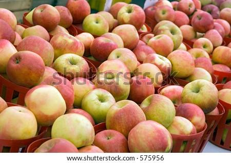 Apples at farmers' market - stock photo
