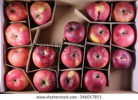 apples in cardboard box with dividers - stock photo