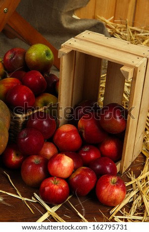 Apples in crate with straw closeup
