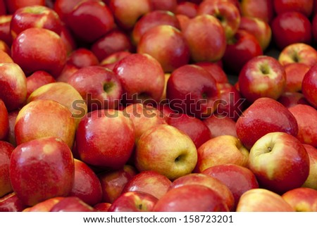 Apples on a market stall in Harbour Town, Queensland, Australia. Full-frame, Background. - stock photo