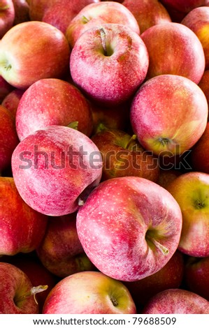 Apples on display at the farmer's market - stock photo