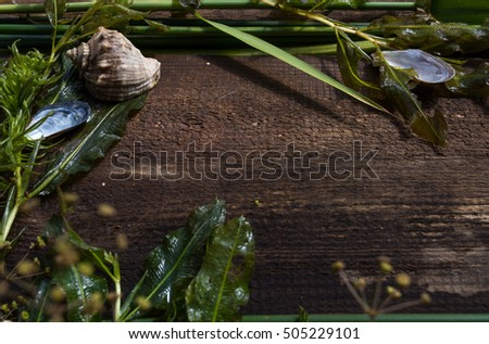 applique of freshwater plants and seashells lying on a board