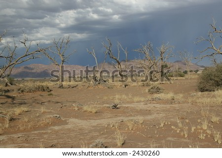 Approaching Storm in riverbed near Sossusvlei, Namibia - stock photo
