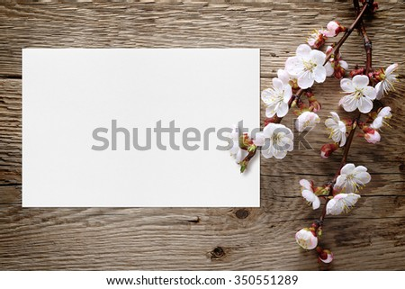 Apricot blossom and blank greeting card on wooden background - stock photo