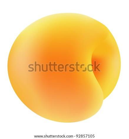 Apricot close-up on white background. - stock photo