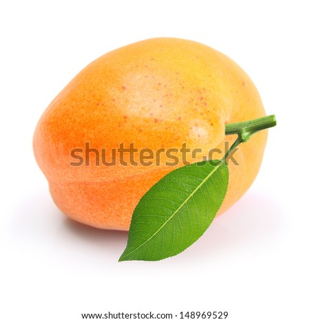 Apricot fruit with leaf isolated on white background - stock photo