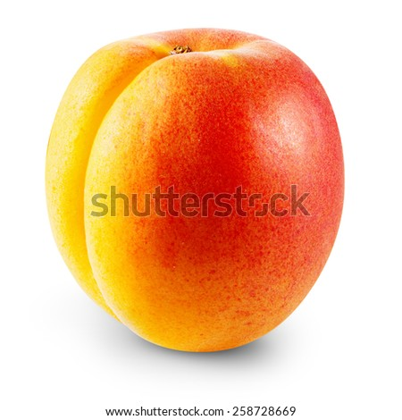 Apricot fruits isolated Clipping Path