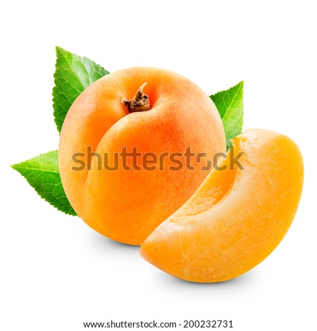 Apricot fruits with leaves isolated  - stock photo