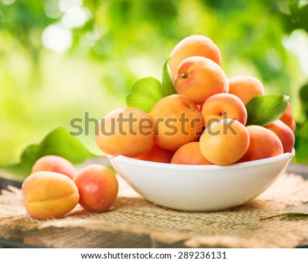 Apricot. Ripe Organic Apricots with leaves on a white wooden table over green nature blurred background. Orchard - stock photo