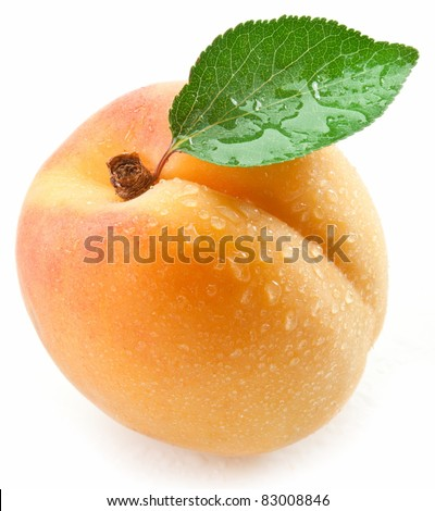 Apricot with leaf on a white background. - stock photo
