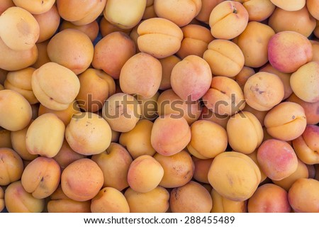 Apricots background in farmer market. Prunus armeniaca background. Selective focus and shallow dof. - stock photo